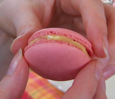 macaron_vanille_fraise13