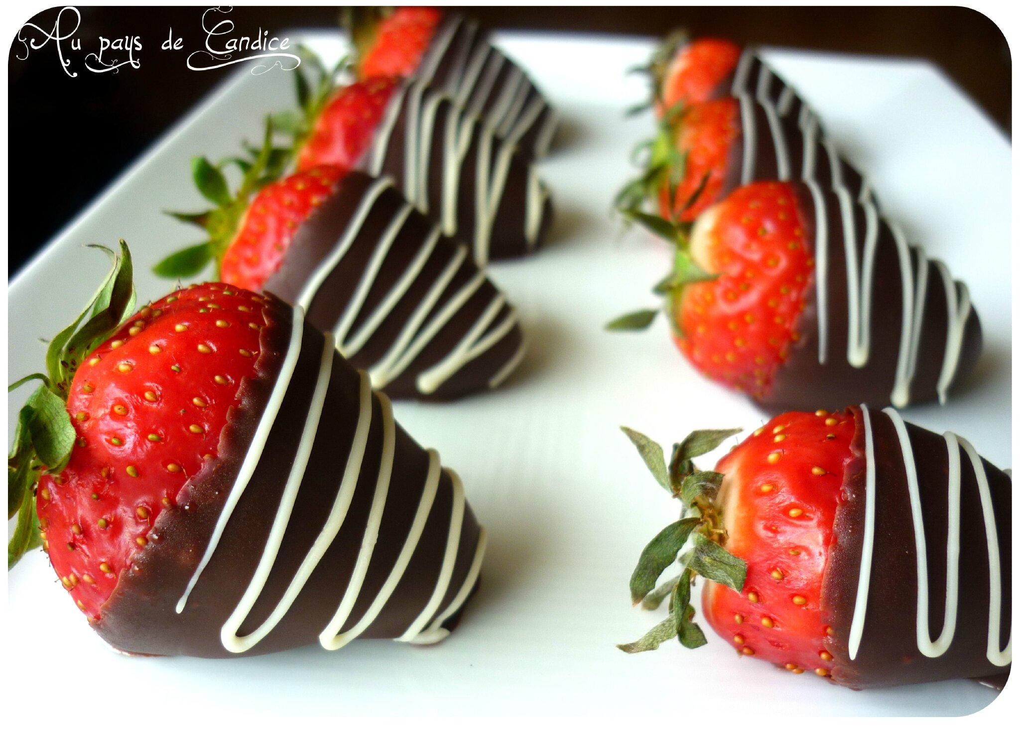 fraises au chocolat au pays de candice