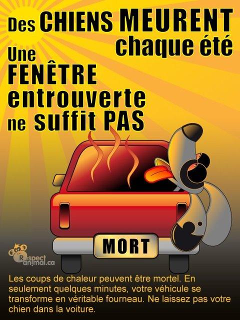 Affiche pour la prevention du coup de chaleur