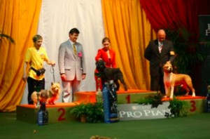 Podium Golden Dog Trophy