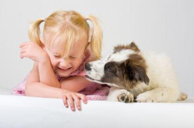 Léchouille chien enfant