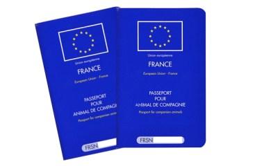 passeport chien