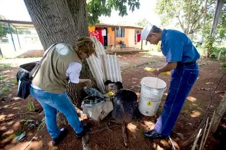 agentescombateaedesdenguezikaagbrasil - Contra Aedes, governo autoriza entrada à força em casas