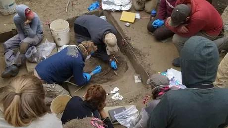 O esqueleto da bebê foi encontrado em 2013 e a análise de seu DNA revela coisas surpreendentes sobre os primeiros ancestrais da América