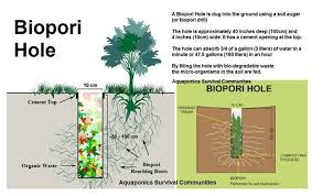 Photo of Mengenal Biopori