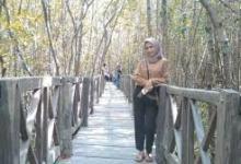 Photo of Tongke Tongke  Mangrove Terluas Di Indonesia
