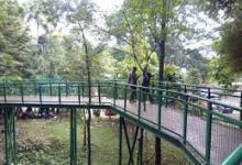 Photo of Babakan Siliwangi Bandung Sebagai Hutan Kota Dunia