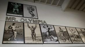 Mange forbilder som Mr. Olympia henger på veggene på gymmen. (Foto: Lars Haugdal Andersen, NRK)