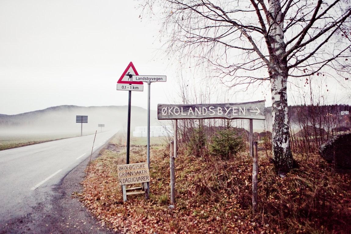 Hurdalsjøen Økologiske Landsby (Foto: Tom Øverlie, NRK)