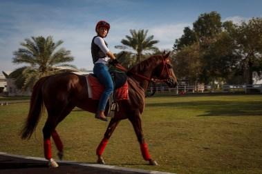 Veronika (28) har drømmejobben for enhver norsk hestejente. Hun trener hestene til sjeik Khalifa av Abu Dhabi. (Foto: Matias Nordahl Carlsen, NRK)