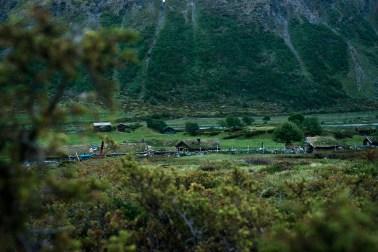"""Inner Gammelsetra i Grøvudalen er en stiftelse som i 40 år har formidlet gamle setertradisjoner til unge. Slagordet deres er """"Gamle tradisjoner i unge hender"""", og driverne er i alderen 16-30 år. Setra ligger en og en halv times gange fra nærmeste bilvei, og til å være høyt oppe på fjellet er omgivelsene frodige og grønne. (Foto: Helle Gannestad)"""