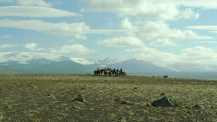 Nydelig natur danner majestetisk bakteppe i Om hester og menn (Foto: Europafilm).