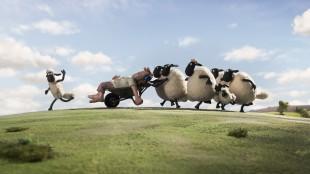 Flokken har hoppet over gjerder, bonden har sovnet og så gjenstår det bare å trille han bort. (Foto: SF Norge AS)