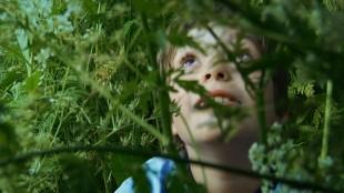 Brødre er en nydelig og poetisk skildring av norsk barndom (Foto: Fenris film/Euforia).