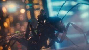 Ant-Man kommuniserer godt med maur, og får etterhvert lov til å sitte på ryggen. (Foto: The Walt Disney Company Nordic)