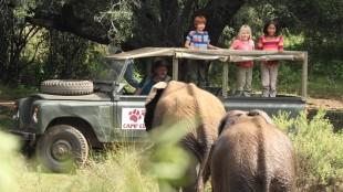 Barna og bestefar får kontakt med elefanter i Karsten og Petra på safari (Foto: SF Norge AS).