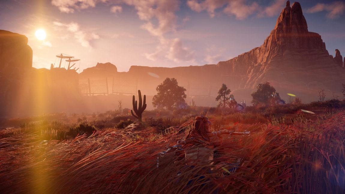 Du kan skjule deg for fienden i det høye sivet. (Anmelders skjermdump fra PS4 Pro. © Sony Interactive Entertainment).