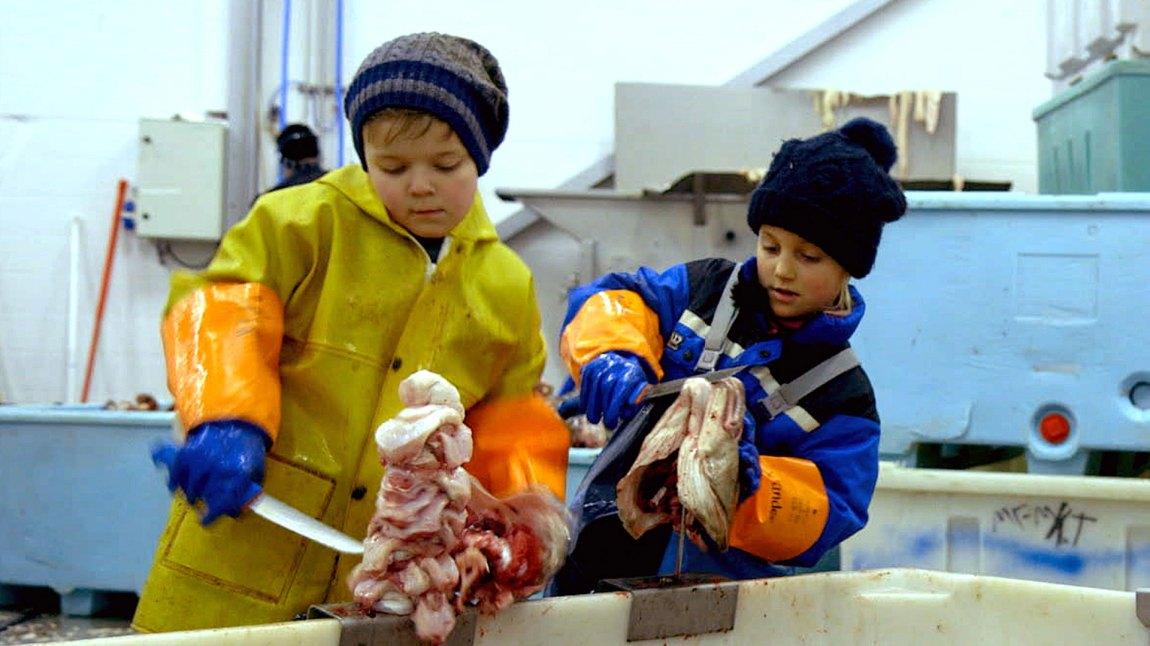 Tobias fra Myre lærer Ylva fra Oslo å skjære tungen av torsken. (Foto: Tour de Force)