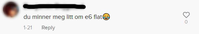 Et skjermbilde av en kommentar på Tiktok der det står: du minner meg litt om e6 flat [latter-emoji]