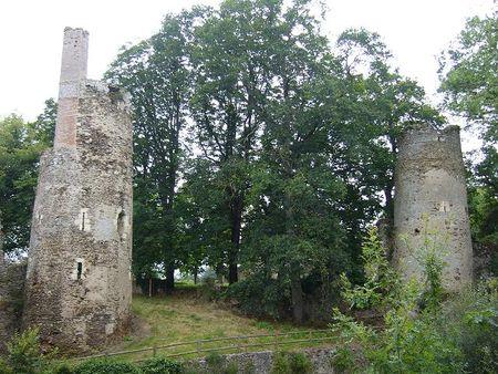 Tours_vestiges_des_ruines_du_chateau_de_Lir__de_Joachim_du_Bellay