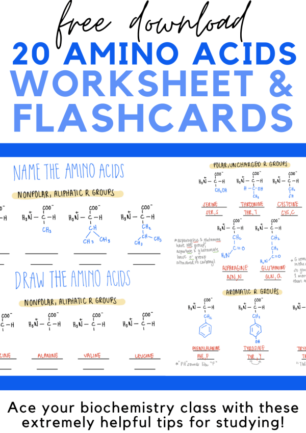 5 Extremely Helpful Tips for Studying Biochemistry (Includes Free Flashcards & Worksheet)