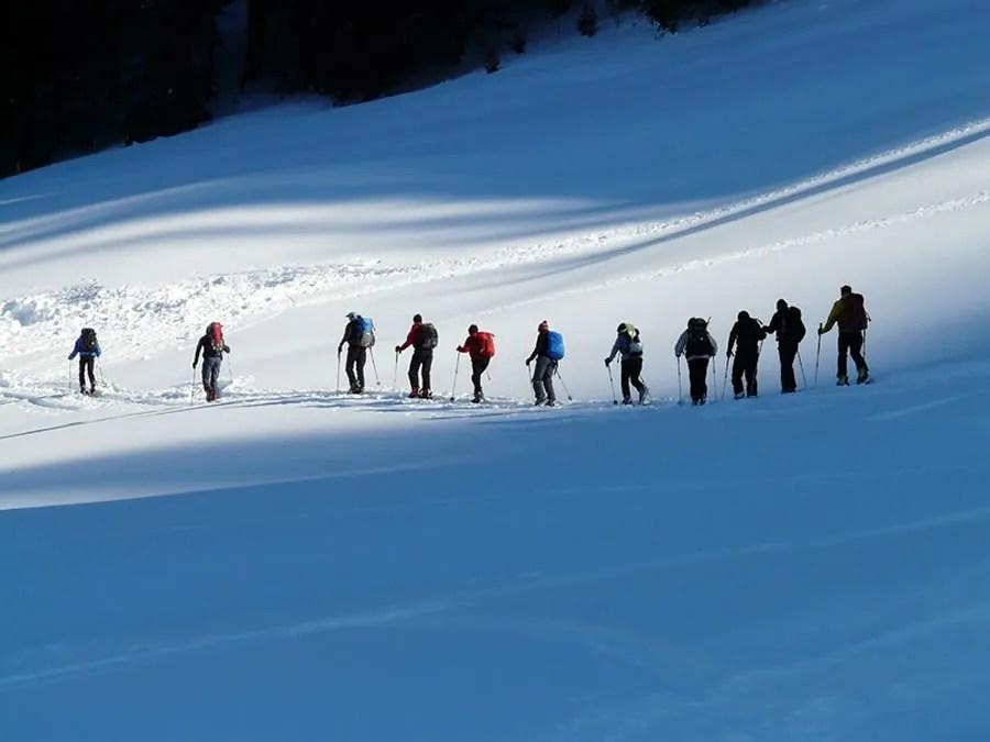 P3 Travel |   ski4