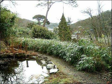 gardens3_465x349