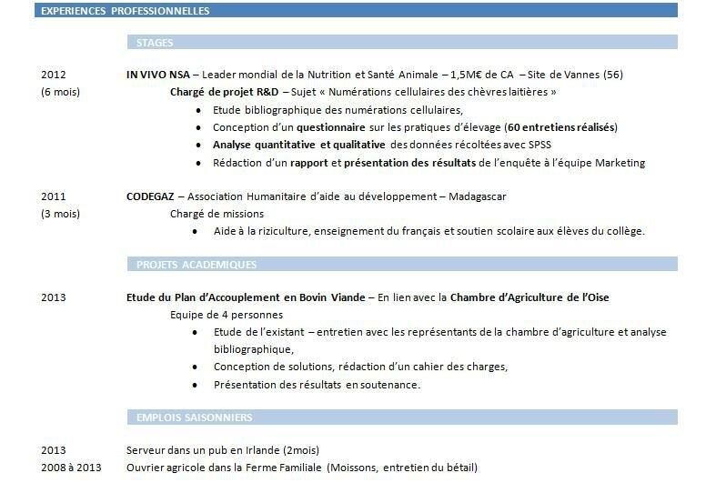 Utiliser Des Sous Rubriques Presenter La Rubrique Experiences Professionnelles D Un Cv Partie 3 Conseils De Recruteur