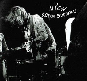"""Promenade sur les traces d'un géant, Neil Young : """"Odeon Budokan"""" (1976), extrait de """"Archives Vol. II"""" - Le journal de Pok"""