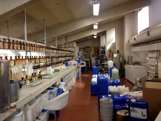 Eine sehr informative Führung in der Parfüm-Fabrik Gallimard in Grasse 3