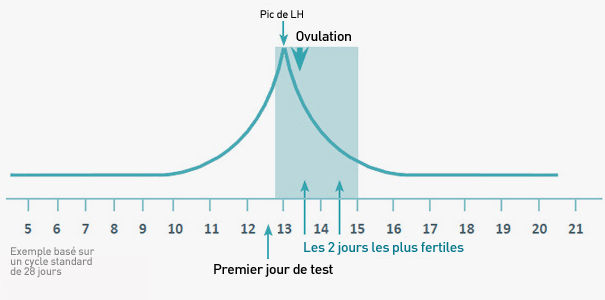 courbe ovulation