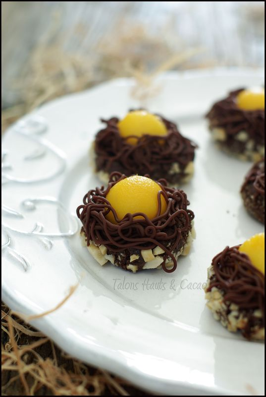 nids de biscuits recettes chocolat