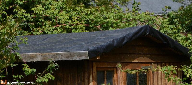 toit d un abri de jardin