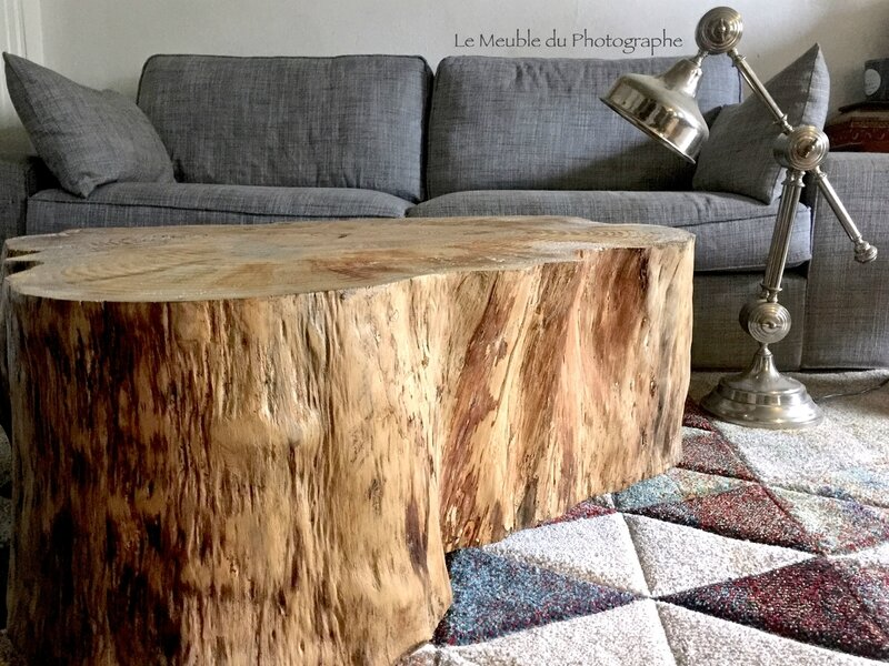 autre tronc d arbre devenu table basse