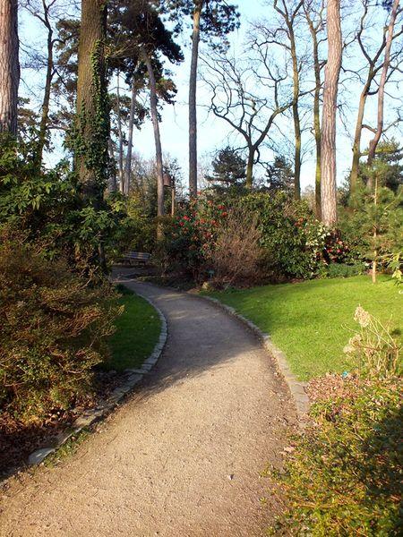 parc-floral-vincennes-printemps-fleurs-jonquilles-magnolias (8)