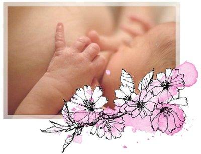 naturo allaitement fleur NANA