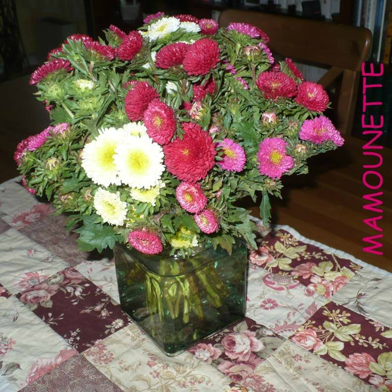 BouquetS Dautomne Mas Des Paillasses