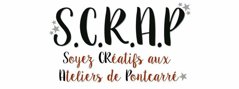 logo_scrap