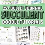 25 Best Succulent Cactus Doodle Ideas For Bujo Addicts Crazy Laura