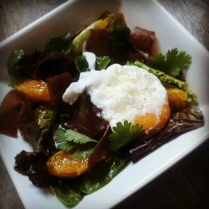 salade orange jeunes pousses