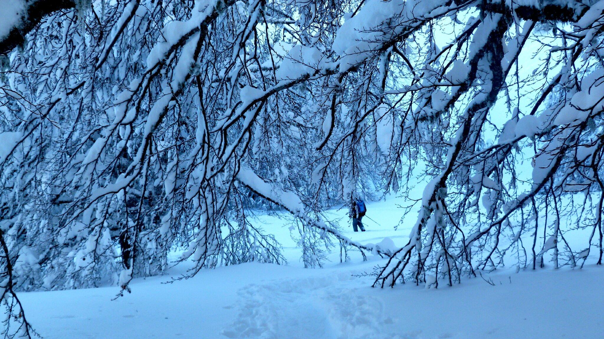 """Résultat de recherche d'images pour """"neige bleue peinture """""""