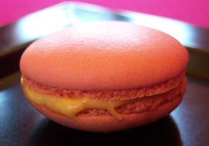 macaron_vanille_fraise19