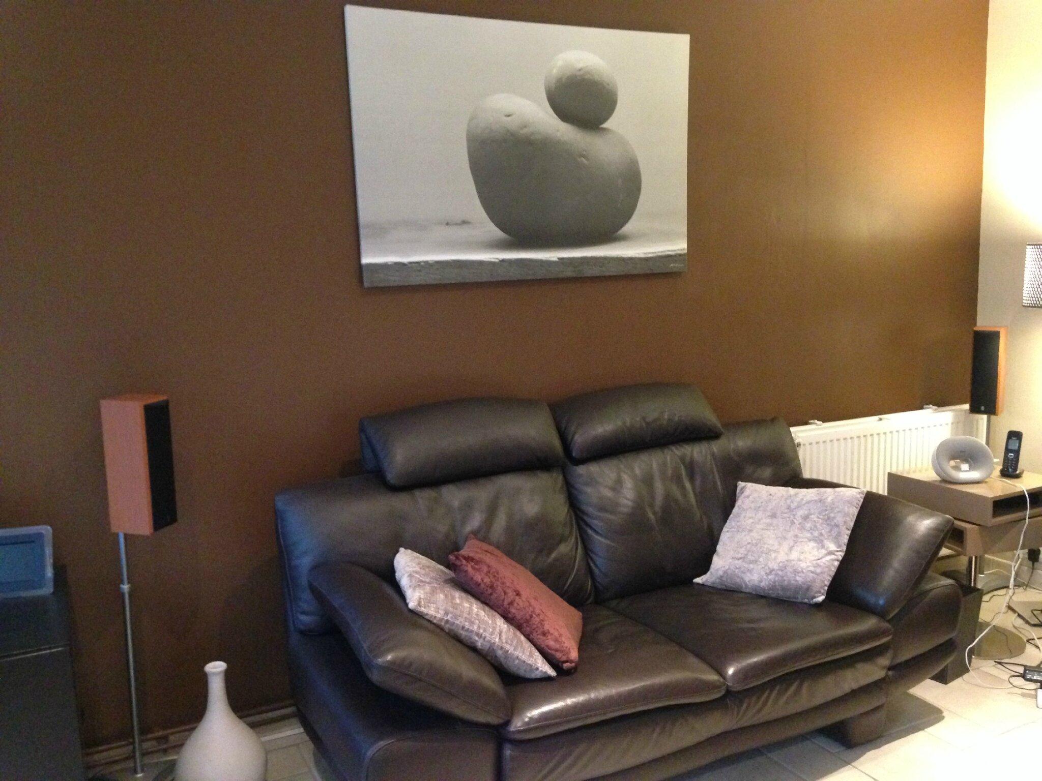 Salon Avec Un Mur Couleur Chocolat Ides De Dcoration
