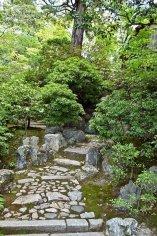 jardin du kinkaku-ji