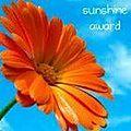 Chouette, un rayon de soleil !