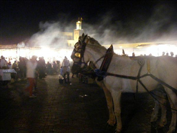 Maroc-Marrakech-jemma-el-fna (12)