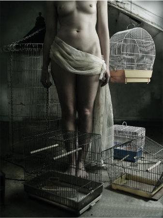 Les_cages_Fernando_Figueiredo_Maria_Flores