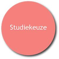 Studiekeuze button roze rood
