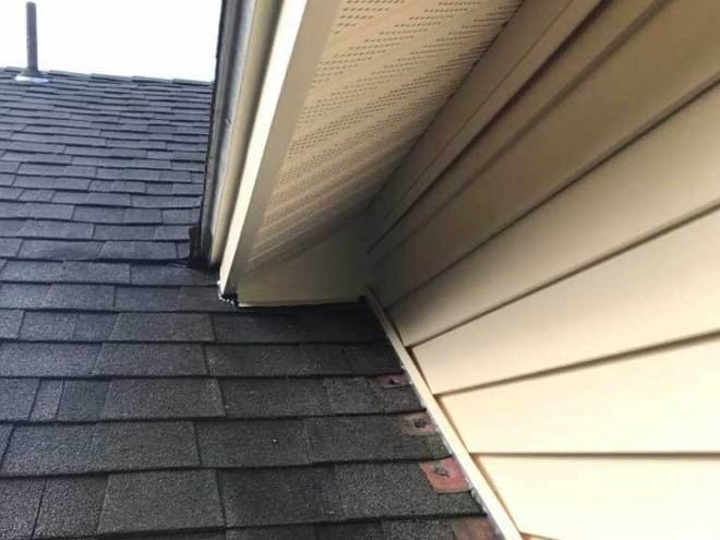 hershey animal removal repaired roof