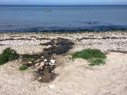 Ferskvandskilde. Det reneste vand, lige midt op af sandet på stranden.